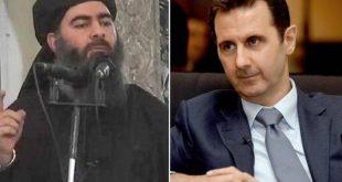التوعية النوعية - داعش والأسد