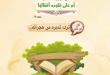 الرسائل التدبرية - أفلا يتدبرون القرآن