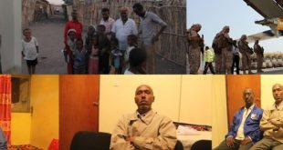 مقالات - الإمارات تشرد عفر إريتريا
