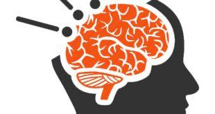 التوعية النوعية - بين الفكرة والمتكلم