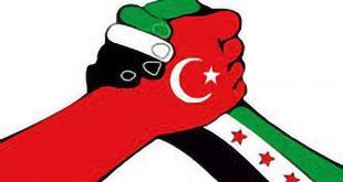 الثورة السورية - تركيا والثورة